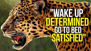 WAKE UP DETERMINED & START THE DAY - Motivational Video Compilation - 30 Minute Morning Motivation