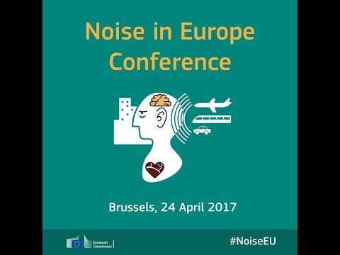 Environmental noise: Noise makes its mark in the long-term