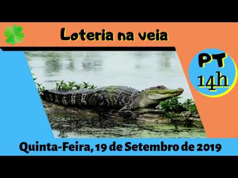 Resultado Das 14 Horas – 19/09/2019 – (PT RJ)  Jogo Do Bicho De Quinta-Feira