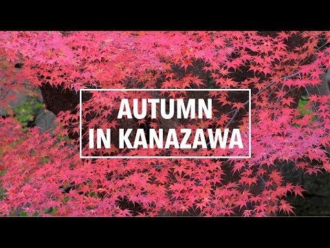 Autumn in Kanazawa City 金沢 | A Japan Travel Film