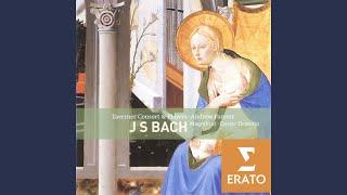 Lobet Gott in seinen Reichen (Himmelfahrts-Oratorium) BWV 11: Aria: Jesu, deine Gnadenblicke (S)