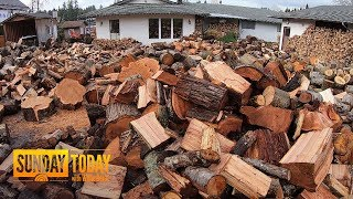 To Keep People Warm, This Man Gives Away His Chopped Wood For Free | Sunday TODAY