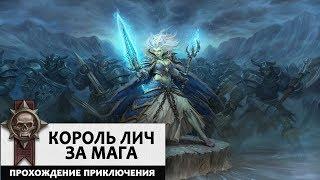 Король Лич. Маг. Прохождение Цитадели Ледяной Короны базовыми колодами!
