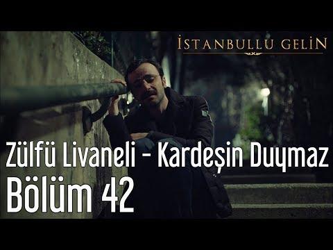 İstanbullu Gelin 42. Bölüm - Zülfü Livaneli - Kardeşin Duymaz