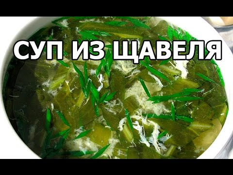 Суп из щавеля. Необычный суп со щавелем с мясом! - YouTube