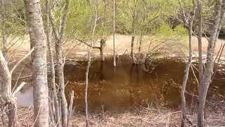 瑞穂ダムの水場にて 実猟犬としての訓練です。 (^。^)y-.。o.