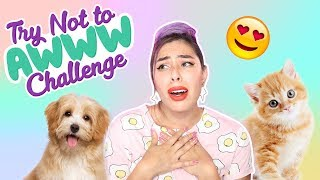 Try Not To Aww Challenge