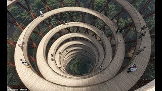 Tree-mendous!The STUNNING plans for an elevated walk through one of Denmark's preserved forests