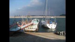 ヨット「ボヘミアン」三河湾篠島へ1泊河豚宴会に12