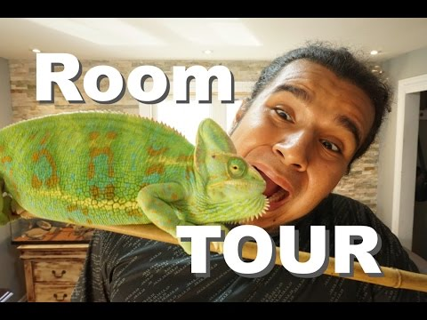Awesome Room Tour with Reptiles! 2016!! |Newly Renovated!!! 🐍🐍🐍