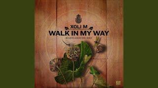 Walk in My Way Original Mix