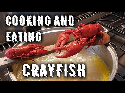 Cooking Crayfish -- Crawfish For The First Time.