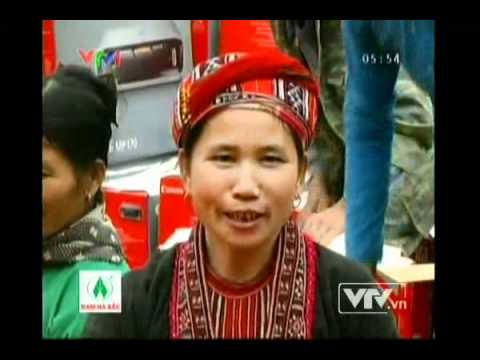 Cam sanh Ham Yen 5