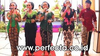 Dimas Tedjo Terbaru - Sinom - All Artis Purwo Wilis