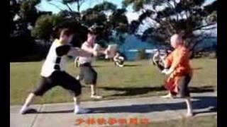 少林内外功表演 Shaolin Kungfu and Qigong