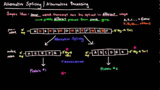 Baixar Alternative Splicing / Alternative Processing (Eukaryotes)