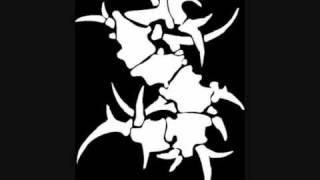 Sepultura - Piranha ( Exodus cover )