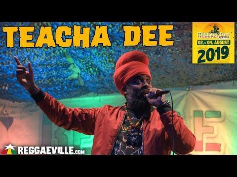 Festival Report - Reggae Jam 2019