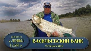 Рыбалка в Астрахани. Нижняя Волга. Рыболовная база ФораФиш.