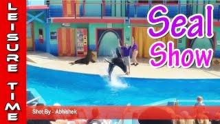Seal Show at SeaWorld San Antonio TX - Full HD