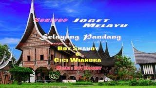 Gambar cover Boy Shandy - Joged melayu Selayang Pandang