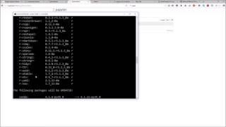 Installieren Sie R Kernal / Erstellung von R-Arbeitsmappe in Jupyter