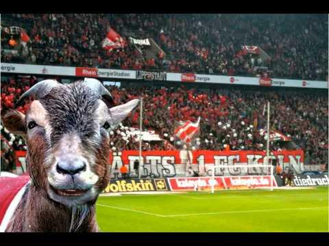 Hennes FC Köln