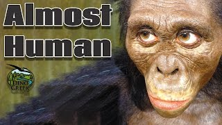 Archaic Humans | Species that were almost Human