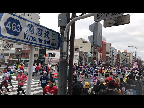 Tokyo Marathon Course | Cheering the Runners