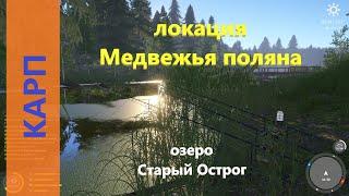 Русская рыбалка 4 озеро Старый Острог Карп на точке с угрем