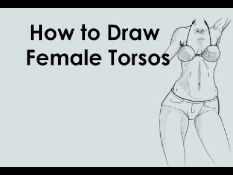 How to draw the female torso from mind