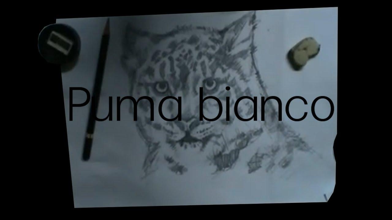 puma bianco