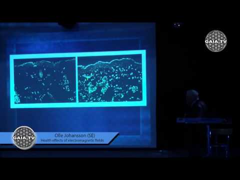 Olle Johansson Health effects of electromagnetic fields by Openmindconference- Denmark 2014