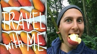 let's travel and eat fruit together...ANYWHERE!