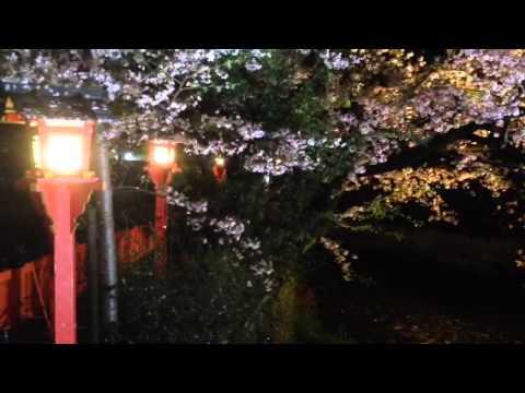 Kyoto phone 1