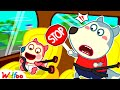 Baby Jenny! Watch Out for Dangers in the Car - Wolfoo Learns Safety Tips for Kids | Wolfoo Family