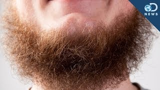 Science Says Beards Aren't Sexy Anymore!