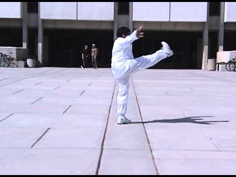 GM Victor Fu Demonstrates LiangYi Chuan at University of Utah World Tai Chi Day, April 2004