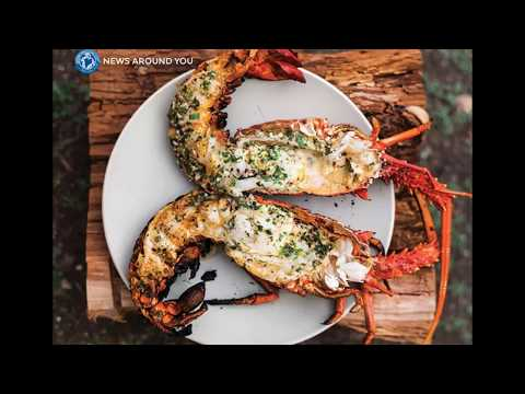 Lobsters must be comfortably numb before cooking: Swiss government