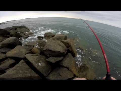 Guernsey Bass Fishing - My First Bass of 2016