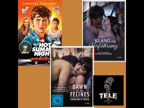 "Download ""Hot Summer Nights"", ""Dawn Of The Felines"" und ""Klang der Verführung"" - Review, Kritik - Der T..."
