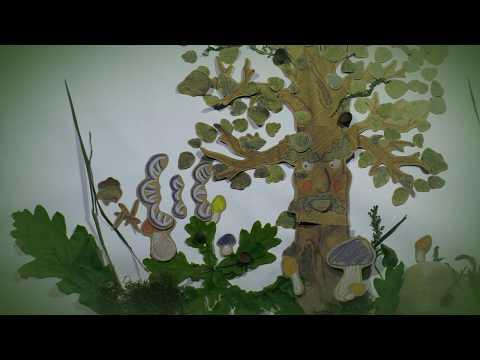 Nowy singiel Viki Gabor na ywo! - YouTube