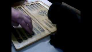 Себастьян играет в нарды