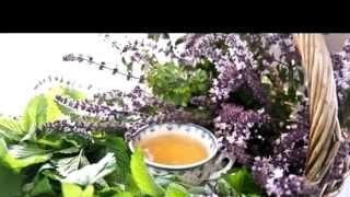 Монастырский чай купить в Самаре