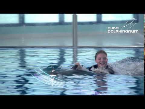 Dolphin Planet At Dubai Dolphinarium, Meet, Swim & Play With Dolphins!
