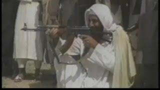 Did White House lie about Osama bin Laden raid?