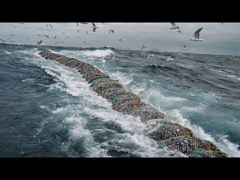Big Catch Fishing In The Deep Sea With Big Boat - Amazing Modern Fish Processing Line