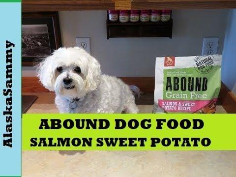 Abound Grain Free Dog Food Salmon Sweet Potato