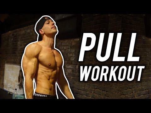 PULL WORKOUT! (RUG & BICEPS)