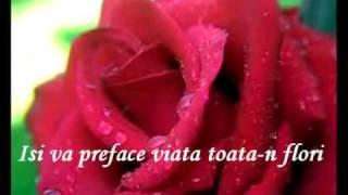 Milioane De Trandafiri Rosii - Alla Pugacheva